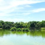 八埤塘生態公園