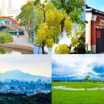 【台北捷運中和新蘆線】10個適合銀髮熱門景點/交通/路面/廁所/遊玩重點