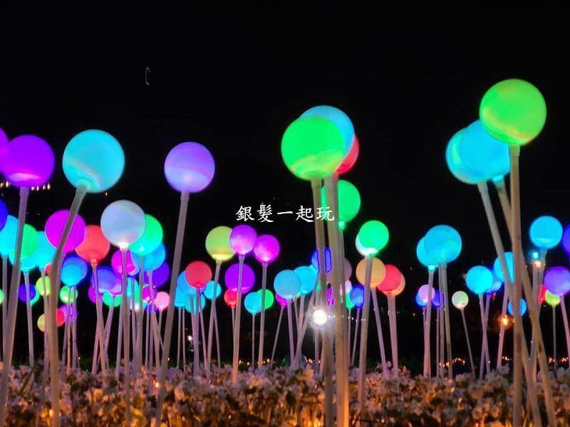 板橋蝴蝶公園