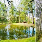 12處國家森林遊樂區擇1免費