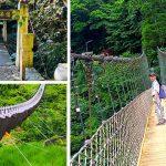 台灣特色吊橋