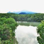 敬老卡坐捷運|紅樹林生態教育館+生態步道
