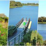 雲林口湖椬梧滯洪池