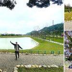 敬老卡坐捷運|樹林環保河濱公園/沐心池
